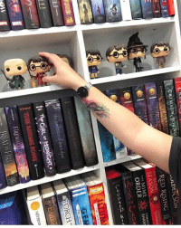 Harry Potter, Memes, and Savage: CRIMSON dBOUND  e eyolution o mara  THIS SAVAGE SONG  ANOELINI  ULDEN SON  RED RISING  SHANN  SEASON  SAMANT  THE MIME  ORDER  ATORCHN  NEVERNV Photo by @krish_reads 😍 Which Harry Potter figure do you want? . dwclassicpetite Get 15% off on @danielwellington with my code POTTERFACTS Free worldwide shipping! Danielwellington.com