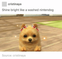 "Http, Source, and Via: cristinaya  Shine bright like a washed nintendog  Source: cristinaya <p>Shine bright via /r/wholesomememes <a href=""http://ift.tt/2qO1JeM"">http://ift.tt/2qO1JeM</a></p>"