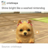 Memes, Camera, and Time: cristinaya  Shine bright like a washed nintendog  Source: cristinaya i have over 20 thousand photos in my camera roll and i really want to delete most of them but every time i start to i lose all my motivation and stop after like 2 minutes
