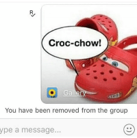 Croc-chow!  Galler  You have been removed from the group  ype a message... meme memes dankmemes dankmemes groupchat croc crocs lmao lol icant yasboo cho lightning dabnation dabson dabber cancermemes realshit realniggahours fuckingme ucktags deadass fuck fukk crocchow removed friends friendship yt pooper omg Frfr