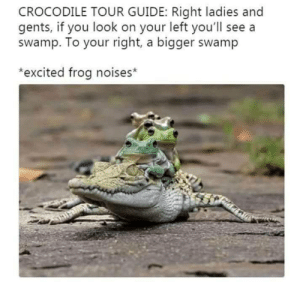 Your Right: CROCODILE TOUR GUIDE: Right ladies and  gents, if you look on your left you'll see a  swamp. To your right, a bigger swamp  *excited frog noises*