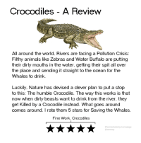 Animals, Dank, and Work: Crocodiles - A Review  All around the world, Rivers are facing a Pollution Crisis:  Filthy animals like Zebras and Water Buffalo are putting  their dirty mouths in the water. getting their spit all over  the place and sending it straight to the ocean for the  Whales to drink.  Luckily. Nature has devised a clever plan to put a stop  to this: The humble Crocodile. The way this works is that  now when dirty beasts want to drink from the river, they  get Killed by a Crocodile instead. What goes around  comes around. I rate them 5 stars for Saving the Whales.  Fine Work, Crocodiles  @welcometomymemepage  @wtmmp