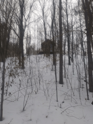 Cross-Country Skiing in Northern Michigan: Cross-Country Skiing in Northern Michigan