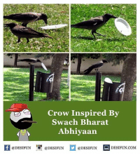 Memes, 🤖, and Com: Crow Inspired By  Swach Bharat  Abhiyaan  @DESIFUN  @DESIFUN  @DESIFUN  DESIFUN.COM desifun