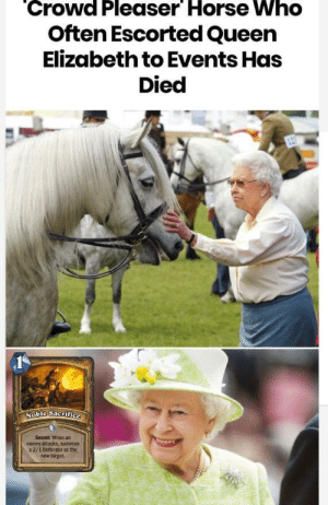 Dank, Memes, and Queen Elizabeth: Crowd Pleaser Horse Who  Often Escorted Queen  Elizabeth to Events Has  Died  Secret When an  enemy attacks, summon  a 2/1 Defender as the  new target. Not my concept by Ryaned24 MORE MEMES