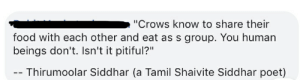 """Food, Pitiful, and Im 14 & This Is Deep: """"Crows know to share their  food with each other and eat as s group. You human  beings don't. Isn't it pitiful?""""  - Thirumoolar Siddhar (a Tamil Shaivite Siddhar poet) Humans need to learn sharing from crows"""
