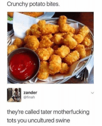 Dank, Potato, and Crunchy: Crunchy potato bites  zander  @finah  they're called tater motherfucking  tots you uncultured swine