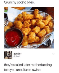 Goes good with a ground beef sandwich.: Crunchy potato bites  zander  @finah  they're called tater motherfucking  tots you uncultured swine Goes good with a ground beef sandwich.