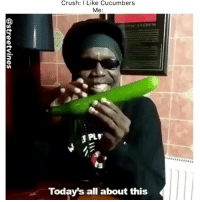Crush, Memes, and 🤖: Crush: I Like Cucumbers  Me:  PLV  Today's all about this - DM This To A Friend😂 Follow 👉 @stonerjoke