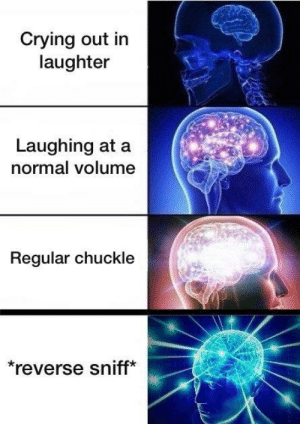 Crying, Dank Memes, and Laughter: Crying out in  laughter  Laughing at a  normal volume  Regular chuckle  reverse sniff* Nose giggle
