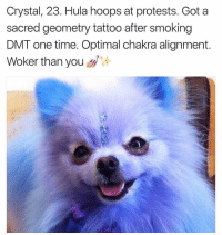 Protest, Smoking, and Tattoos: Crystal, 23. Hula hoops at protests. Got a  sacred geometry tattoo after smoking  DMT one time. Optimal chakra alignment  Woker than you Hopefully someday I can say the same