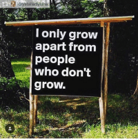 Memes, 🤖, and Grow: Crystalladyluna  I only grow  apart from  people  who don't  growl. 🤔