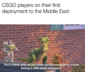 Meme, Toy Story, and Game: CSGO players on their first  deployment to the Middle East:  You'd think with all my video game experience, I'd be  feeing a little more prepared. Toy Story 4 has revived Toy Story meme formats, right? ...Right?