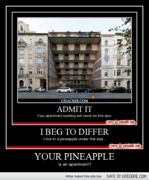 Your Pineapplehttp://omg-humor.tumblr.com: CSLACKER.COM  ADMIT IT  Your apartment building will never be this epic.  TASTE OF AWESOME.COM  I BEG TO DIFFER  I live in a pineapple under the sea..  TASTE OF AWESOME.COM  YOUR PINEAPPLE  is an apartment?  TASTE OFAWESOME.COM  Hitler hated this site too Your Pineapplehttp://omg-humor.tumblr.com