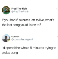 Dank, Fish, and Live: ct  Fred The Fish  @FredTheFish8  If you had 6 minutes left to live, what's  the last song you'd listen to?  connor  @connorhannigan4  l'd spend the whole 6 minutes trying to  pick a song