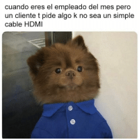 Simple, Hdmi, and Cable: cuando eres el empleado del mes pero  un cliente t pide algo k no sea un simple  cable HDMI ahi me has piyao