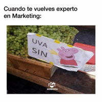Memes, 🤖, and Marketing: Cuando te vuelves experto  en Marketing:  Uv  I N  MORIDERISA 😂😂😂