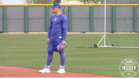 Mlb, Smooth, and Best: CUB5  INSIDER Baez is smooth A.F. credit: @realcubsinsider for the best Cubs content.
