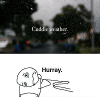 Memes, Weather, and 🤖: Cuddle weather.  Hurray.