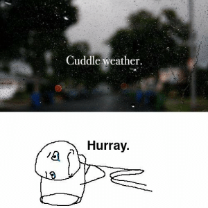 Weather, MeIRL, and Cuddle: Cuddle weather  Hurray. meirl