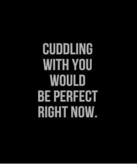 cuddle: CUDDLING  WITH YOU  WOULD  BE PERFECT  RIGHT NOW.