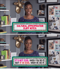 Ironic, Cool, and You: CULTURAL APPROPRIATION  CLIFF NOTES   IT'S NOT COOL WHEN YOU DO IT,  BUT IT IS COOL WHEN WE DO IT <p>I wish I could say this was supposed to be ironic.</p>
