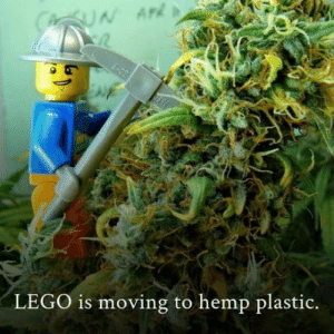 Everything made of plastic can be done with this wonderful plant! Let's save the world with hemp!: CUN AP  6-02  LEGO is moving to hemp plastic. Everything made of plastic can be done with this wonderful plant! Let's save the world with hemp!