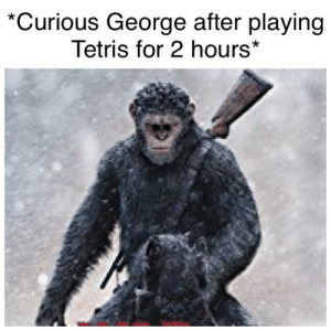 Apes all rise: *Curious George after playing  Tetris for 2 hours* Apes all rise