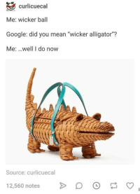 """Google, Alligator, and Mean: curlicuecal  Me: wicker ball  Google: did you mean """"wicker alligator""""?  Me: ..well I do now  Source: curlicuecal  12,560 notesD"""