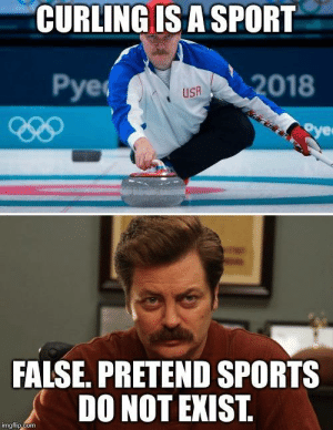 Looks like Ron Swanson has a son on the U.S. Olympic Curling Team by Westworldfan FOLLOW 4 MORE MEMES.: CURLING IS A SPORT  Рyeс  2018  USA  oye  FALSE. PRETEND SPORTS  DO NOT EXIST.  imgflip.com Looks like Ron Swanson has a son on the U.S. Olympic Curling Team by Westworldfan FOLLOW 4 MORE MEMES.