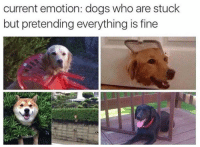 Pretending Everything Is Fine