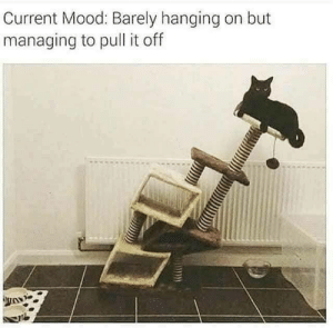 Mood, Tumblr, and Blog: Current Mood: Barely hanging on but  managing to pull it off anxietyproblem:  Follow us @anxietyproblem​