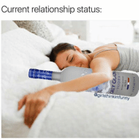 Girls, Grey, and Girl Memes: Current relationship status:  @girlsthinkimfunny Grey goose never accidentally sleeps with other girls ( @girlsthinkimfunny )