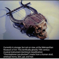 """Dank, Hair, and Skull: currently in storage, but not on view, at the Metropolitan  Museum of Art: This terrifically ghastly 19th century  musical instrument (technical classification:  """"Chordophone-Lyre-plucked') made from a human skull,  antelope horns, skin, gut, and hair."""