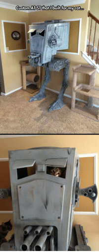 At-St, House, and Cat: Custom AT ST thatI builtfor my cat. <p>Cat House Level.</p>
