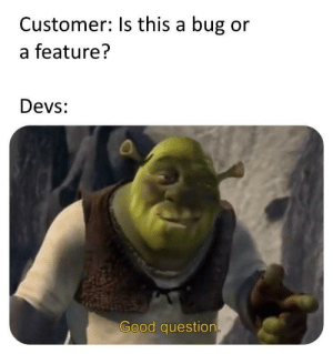Good, Asking, and Bug: Customer: Is this a bug or  a feature?  Devs  Good question If youre asking the question its a feature