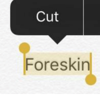 Abraham, Bce, and Foreskin: Cut  Foreskin YHWH commands Abraham to circumcise himself (~2000 BCE)
