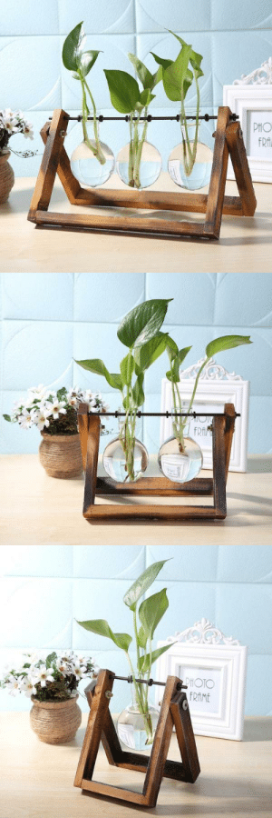cute-aesthetics-things: Bring life to any desktop space in your home with this stunning glass  wood terrarium planter! Made from premium glass and wood! = GET YOURS HERE = : cute-aesthetics-things: Bring life to any desktop space in your home with this stunning glass  wood terrarium planter! Made from premium glass and wood! = GET YOURS HERE =
