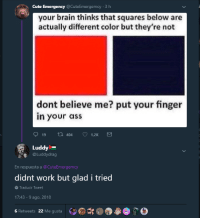 me_irl: Cute Emergency @CuteEmergemcy 3 h  your brain thinks that squares below are  actually different color but they're not  dont believe me? put your finger  in your ass  19t 404 1.2K  Luddy  @Luddydrag  En respuesta a@CuteEmergemcy  didnt work but glad i tried  Traducir Tweet  17:43-9 ago. 2018  6 Retweets 22 Me gusta me_irl