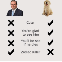 Zodiac Killer: Cute  You're glad  to see him  You'll be sad  if he dies  Zodiac Killer