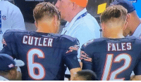 Sums it up: CUTLER  FALES Sums it up