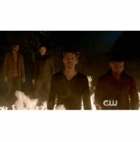 Children, Desperate, and Journey: CUU [The Originals 4x04 - Keepers of the House Promo] SAVING HOPE – Desperate to save her daughter, Hayley turns to Marcel for help uncovering information about the mysterious force that has set its sights on the children of New Orleans. While Klaus remains behind with Hope, Elijah and a reluctant Vincent join the hunt, which puts them on a dangerous collision course with an unlikely new threat. Finally, Freya and Keelin must put aside their differences as they embark on a journey that may alter the power dynamic in New Orleans forever. Watch the new episode tonight at 8-7 central on The CW! ⠀ Q: Are you excited for the new episode? ⠀ Youtube: The CW [ klope haylope hopemikaelson klausmikaelson hayleymarshall elijahmikaelson marcelgerard vincentgriffith theoriginals]