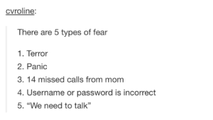 """The types of fear: cvroline:  There are 5 types of fear  1. Terror  2. Panic  3. 14 missed calls from mom  4. Username or password is incorrect  5. """"We need to talk""""  CE The types of fear"""