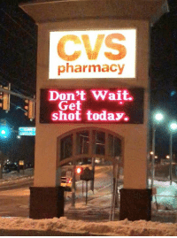 Pharmacy, Today, and Nihilist: CVS  pharmacy  Don't Wait.  shot today.  Get