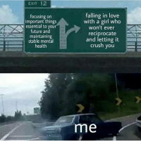 Crush, Future, and Love: CXIT 12  focusing on  important things  essential to your  future and  maintaining  stable mental  health  falling in love  with a girl who  won't ever  reciprocate  and letting it  crush you  me