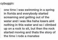 manatee storytime https://t.co/1aCzbxjphl: cybuggin:  one time i was swimming in a spring  in florida and everybody started  screaming and getting out of the  water and i was like haha losers aint  nothing in this water and so i climbed  up on a rock to sit, but then the rock  started moving and thats the story of  the time i rode a manatee manatee storytime https://t.co/1aCzbxjphl