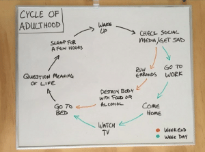 Food, Life, and Run: CYCLE OF  ADULTHOOD  WAKE  UP  CHECK SOCIAL  MEDIA/GET SAD  SLEEP FOR  A FEw HOURS  GO TO  WORK  RUN  ERRANDS  QUESTION MEANING  OF LIFE  DESTROY BODY  WITH FOOD OR  ALCOHOL  Go TO  BED  COME  HomE  WATCH  TV  WEEKEND  WEEK DAY