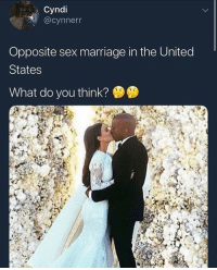 Cats, Dank, and Funny: Cyndi  @cynnern  Opposite sex marriage in the United  States  What do you think? Imagine this real live being the agenda that we had to fight for, niggas really in the streets protesting to stick they pp in a vv... dawg we cant let the world go down like that • ➫➫➫ Follow @Staggering for more funny posts daily! • (Ignore: memes dank funny cats insta love me goals happy love twitter)