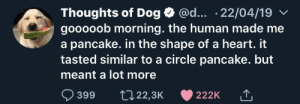 E: @d... .22/04/19  Thoughts of Dog  gooooob morning. the human made me  a pancake. in the shape of a heart. it  tasted similar to a circle pancake. but  meant a lot more  399  t22,3K  222K E