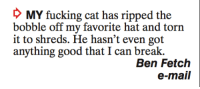 Fucking, Memes, and Break: D MY fucking cat has ripped the  bobble off my favorite hat and torn  it to shreds. He hasn't even got  anything good that I can break.  Ben Fetch  e-mail